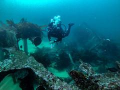 Naufragio el ''Falucho'' - Quintay (evemari.luz) Tags: divingphotography oceanopacifico photosub scubadiving naufragiosenchile shipwreck