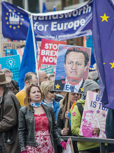 David Cameron Anti-Brexit Sign, People's Vote March DSC_0414
