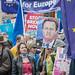 David Cameron Anti-Brexit Sign, People's Vote March DSC_0414