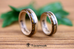 Alliances de mariage en Erable, Oeil de tigre et fil d'or (Taamak) (Taamak jewerlry) Tags: amour artisanat nature natural mariage bijou beauty bague bijouterie couple fiancailles photography photographer engament ring