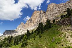 Prospettiva Roda (cesco.pb) Tags: valdifassa valdega catinaccio rodadivael dolomiten dolomiti dolomites alps alpi trentinoaltoadige italia italy canon canoneos60d tamronsp1750mmf28xrdiiivcld montagna mountains