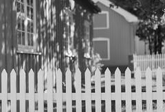 Off-season garden, Norway (KronaPhoto) Tags: høst porsgrunn natur street garden bnw bw monochrome dof fence gjerde tree house wooden trehus offseason closed lines pattern mønster shadow backyard