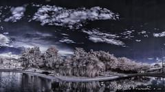 Panorámica infrarrojo_720nm  - infrared landscape_720nm (Luis FrancoR) Tags: panorámicainfrarrojo720nminfraredlandscape720nm infrarrojo infrarred luisfrancor ngw ngs ngd ngg ng nikon nikonflickraward nikonistas 720nm bogotá landscape panoramica panoramic d70infrared