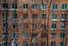 (GrigoryevaKs) Tags: paysage ussr russia building bâtiment plattenbau fenêtres windows hlm