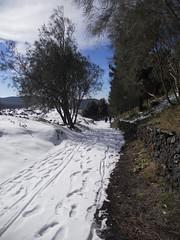 DSCN1056 (Etnaviva) Tags: nebrodi piano dei grilli