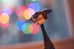 Shakalina (Emese's Dolls) Tags: dollchateau doll fox jackal dog bjd vanessa