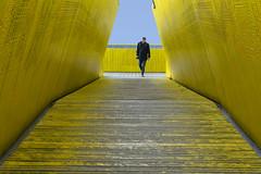Yellow pedestrian bridge (Jan van der Wolf) Tags: map192104v yellow people man geel gangway gang luchtsingel rotterdam pedestrianbridge brug voetgangersbrug lonely architecture architectuur perspective perspectief