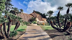 Botanical Building in Balboa Park, San Diego, California (lhboudreau) Tags: plant plants sky outdoors outdoor architecture building palmtrees palmtree palms palm trees tree botanicals botanical botanicbuilding botanicalbuilding urbanpark park balboapark california sandiego