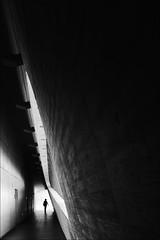 F_MG_5753-1-BW-1-Canon 6DII-Tamron 28-300mm-May Lee 廖藹淳 (May-margy) Tags: maymargy bw 黑白 人像 背影 逆光 剪影 走廊 窗戶 清水模 三角形 幾何構圖 點人 台灣攝影師 慢速 模糊 街拍 線條造型與光影 天馬行空鏡頭的異想世界 心象意象與影像 南投縣 台灣 中華民國 fmg57531bw1 portrait viewfromback backlighting silhouette corridor window triangles humaningeometry nantoucounty canon6dii tamron28300mm linesformandlightandshadow naturalcoincidencethrumylens taiwan repofchina maylee廖藹淳 streetviewphotography mylensandmyimagination
