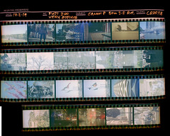 CONTACT SHEET - exp fuji 200 (marcelfeillafe) Tags: 35mm film contact sheet colour negative canon p epson 4870 photo expired melbourne australia 2018 sunny 16