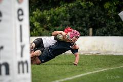 MEDALLIONS V CCB-05384 (photojen10) Tags: methody mcb rugby campbell ccb win shield