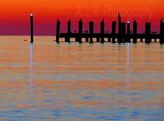 Sunset with pier in Amagannsett ,New York #sunset #Amagannsett #newyorkcity #birdsofinstagram #seagulls #cormoran #summer #evening #pier #red (romalucio35) Tags: newyorkcity red amagannsett seagulls pier cormoran sunset birdsofinstagram evening summer