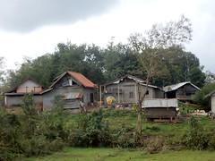 Village Houses (mikecogh) Tags: luangprabang houses village hill poverty improvised corrugatediron
