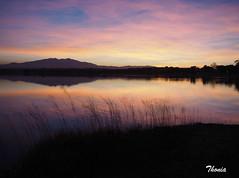 Villeneuve-de-la-Raho (Gatodidi) Tags: villeneuve raho france francia lago lac puesta sol atardecer landscapes paisajepaisaje naturaleza natura rosado