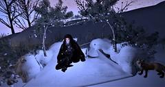"Blog # 199.:Tm:.Creation ""Dare Dream"" Nature Scene (Suzie Coba Esquire) Tags: winter outdoors couples poses landscape snow animation bento tmcreations tm creation secondlife tres chic event camp"