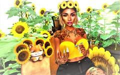 ^Sunflowe^ (Victorya Dynasty) Tags: sunflower cat woman spring daisy mamanonmama maitreya girl yellow sun loading adv love friends sky nature save
