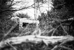 Ghost trip 4 (herbdolphy) Tags: analog analogique argentique pellicule 35mm pentaxmx pentax fomapan 400 caravan abandoned filmisnotdead filmphotography film