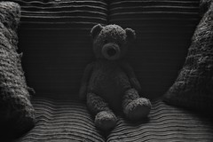 Alone (Explored) (Steve.T.) Tags: alone lonely loneliness neglected forgotten bnw blackandwhite mono teddybear nikon d7200 sigma18200 lowlight lowkey availablelight teddy neglect toy explore