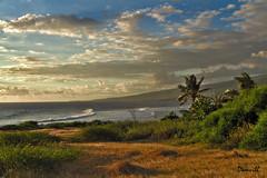 Paysage de l'île de la Réunion (DOMVILL) Tags: laréunion ciel domvill nuages océanindien palmier paysage wwwflickrcompeoplevildom