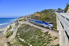 The Last One (MikeArmstrong) Tags: trains railroads amtrak metra los angeles san diego del mar pacific ocean torrey pines beach water tree chicago f59phi locomotive surfliner southern california historic coast highway lossan