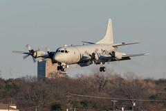 US Navy Lockheed P-3C Orion (zfwaviation) Tags: kdal dal dallas love field texas aviation airplane aircraft plane jet military usn navy us army uh60 blackhawk p3 orion nawc23