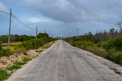 The road and railway to Isabela de Sagua cuts trhough lagoons and mangrove forest (lezumbalaberenjena) Tags: isabela sagua cuba mar oceano atlantico coast costa norte lezumbalaberenjena 2019 pesquero pueblo ciudad