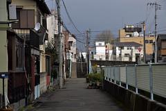 20190331_144_2 (まさちゃん) Tags: 入江川 大口 原付き 階段