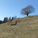 2019-03-29 03-31 Südtirol-Trentino 074 Caldonazzo-Lochere, Pizzo di Levico thumbnail