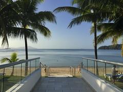 Panama Morning