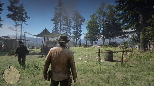 Red Dead Redemption 2_20190112133059