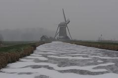 Alblasserwaard. (Bastiaan21) Tags: alblasserwaard bleskensgraaf netherlands nikon nikond90 niederlande paysbas nederland