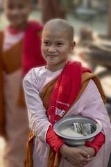 rite quotidien (Patrick Doreau) Tags: portrait asiatique asian birman myanmar birmanie bagan sourire smile beauté beauty burma bonze bonzesse moine bouddhisme quête aumone argent riz nourriture monk hommes mens