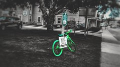 Missing green, all colors of spring. (reallanthreee) Tags: colorsplash green bicycle spring