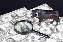 Black bull with magnifying glass on dollar banknotes (wuestenigel) Tags: strong market money run blackbull bitcoin coin bull bussiness magnifier bullrun magnifyingglass cryptocurrency animal geld currency währung business geschäft dollar finance finanzen wealth reichtum savings ersparnisse paper papier cash kasse achievement leistung financial finanziell investment investition bank debt schuld pay zahlen economy wirtschaft symbol desktop number nummer loan darlehen