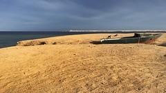 Gestrandetes Boot (M&K Photographie) Tags: boot braun blau himmel wasser strand sand egypt ägypten mkphotographie