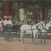 SW Kalamazoo MI 1907 RARE KALAMAZOO CARRIAGE COMPANY began as Lull & Skinner Company then Linford C. Lull Carriage & Sleigh Company Incorporated in 1902 Dirt Street Horse & Buggy Era