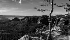 Elbsandsteingebirge In Schwarz Und Weiß (Erikx44) Tags: sachsen elbsandsteingebirge bw blackandwhite mountains view trees outdoor hike sigma16mmf14 schwarzweis monochrome
