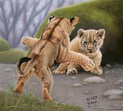 He bothers me again! (irishishka) Tags: art artirishishka pastels pastelpainting drypastel animals realism figurative lioncubs