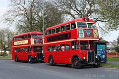 RT40 commemoration Event 2019 (Wandle 190) Tags: rt40 aecregentiii londontransport barking londonbuses eastlondonbuses lt route 62 aec rt rt1431 jxc194 rt2775 lyr826 lbm londonbusmuseum