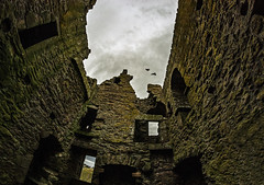 Dunnotar Castle 12 (Bilderschreiber) Tags: dunnotar castle burg festung two birds scotland schottland weitwinkel wide angle