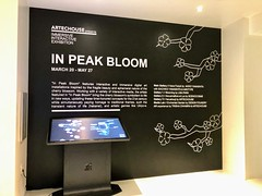 """In Peak Bloom"" @artechouse (anokarina) Tags: appleiphone8 southwestfederalcenter monumentalcore museum gallery art technology digital vr virtualreality sign entertainment immersive interactive"