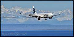 N309AS Alaska Airlines (Bob Garrard) Tags: n309as alaska airlines boeing 737 737900 anc panc vortice