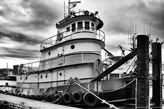 2018-12-30 Tug Mike Quigg (B&W) (03) (2048x1360) (-jon) Tags: anacortes fidalgoisland sanjuanislands skagitcounty skagit washingtonstate washington fidalgobay capsantemarina marina bdock salishsea portofanacortes boat ship vessel tugboat tug pusher mikequigg quigg bw blackandwhite wdf8425 imo8991114 a266122photographyproduction