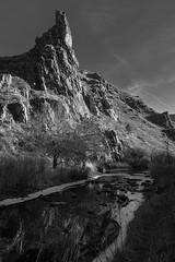 (Luminous☆West) Tags: sigma dp dp1 dp1m merrill fovoen landscape bw black white blackwhite monochrome stream sdim3385 luminouswest luminous west sigmamerrill
