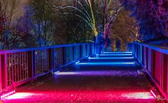 Über diese Brücke musst du gehen (WiSchWerk) Tags: wischwerk städte lusienpark januar winterlichter nachtaufnahmen orte mannheim badenwürttemberg deutschland de