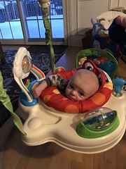 """Luc in His Bouncer • <a style=""""font-size:0.8em;"""" href=""""http://www.flickr.com/photos/109120354@N07/46017862325/"""" target=""""_blank"""">View on Flickr</a>"""