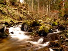 #Schlotenbachklamm #Schwarzwald #Sony #A7III #Tamron #Rollei (Alexander Schönberger) Tags: schlotenbachklamm schwarzwald sony a7iii tamron rollei