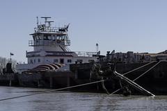 m/vMaryScheel_SAF0979 (sara97) Tags: copyright©2019saraannefinke mvmaryscheel mississippiriver missouri photobysaraannefinke pushboat saintlouis towboat