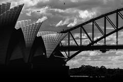 opera house b&w (Greg M Rohan) Tags: silhouette bridgeclimbing people helicopter aeroplane clouds sky structure structures architecture blackwhite blackandwhite monochrome bw sydneyharbourbridge harbourbridge bridge sydneyoperahouse australia sydney operahouse dark d750 nikon nikkor 2018