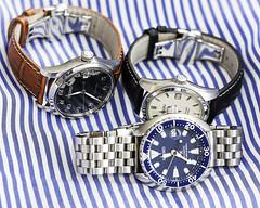 Seiko Automatics (hz536n/George Thomas) Tags: hadleyroma miniturtle 2019 canon canon5d ef100mmf28lmacroisusm michigan ogemawcounty prescott sarb035 spb037 seiko strapcode automatic copyright cs6 nik upnorth watch